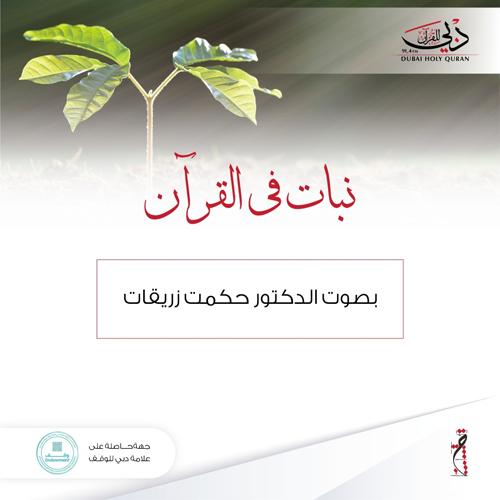 نباتات في القرآن
